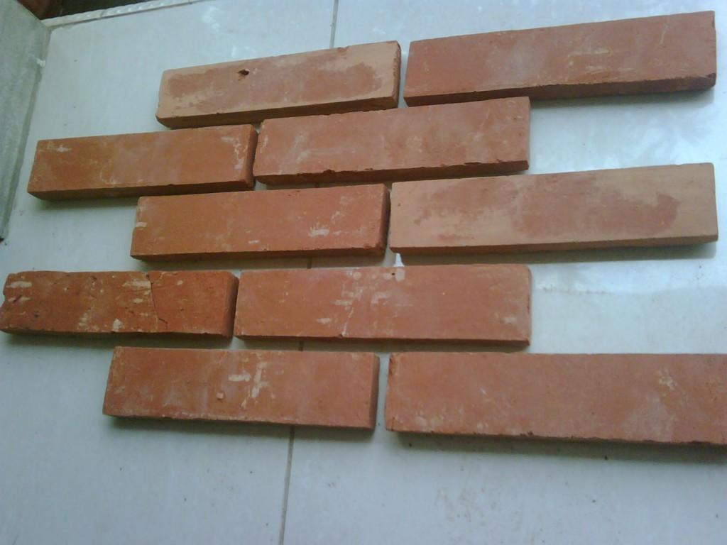 dinding bata pelapis